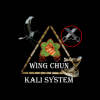 Wing Chun Kali  System Houston, Tx