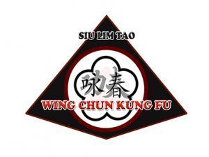 siu lim tao wing chun kung fu