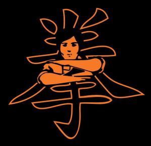 Wing Chun Kung Fu klub Kuen - Novi Sad