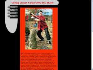 Coiling Dragon Kung-fu/Wu-Shu Studio