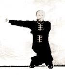 GM Xiao Xong executando o Xun She.