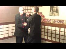 Embedded thumbnail for Sifu Jose Colon,Biu Jee drill # 6