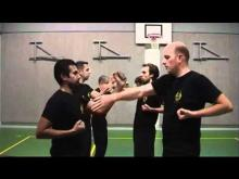 Embedded thumbnail for Wing Chun Kung Fu movements