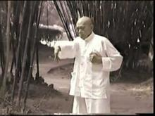 Embedded thumbnail for Grand Master Pan Nam (Peng Nan), Siu Lim Tao