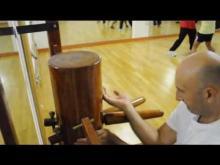 Embedded thumbnail for Ving Tsun Kung Fu Schweiz - Basel