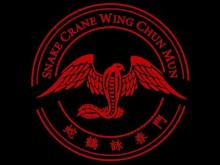 Embedded thumbnail for Snake Crane Wing Chun big huen sao chi sao