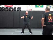 Embedded thumbnail for Sifu Wilfred and Sifu Julio on shifting