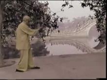 Embedded thumbnail for Grand Master Pan Nam (Peng Nan), Chum Kiu