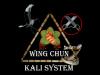 Wing Chun Kali System Houston, Tx